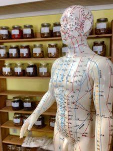 Alternative Acupuncture - chinese acupuncture meridians