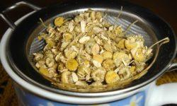 herbal preparation methods